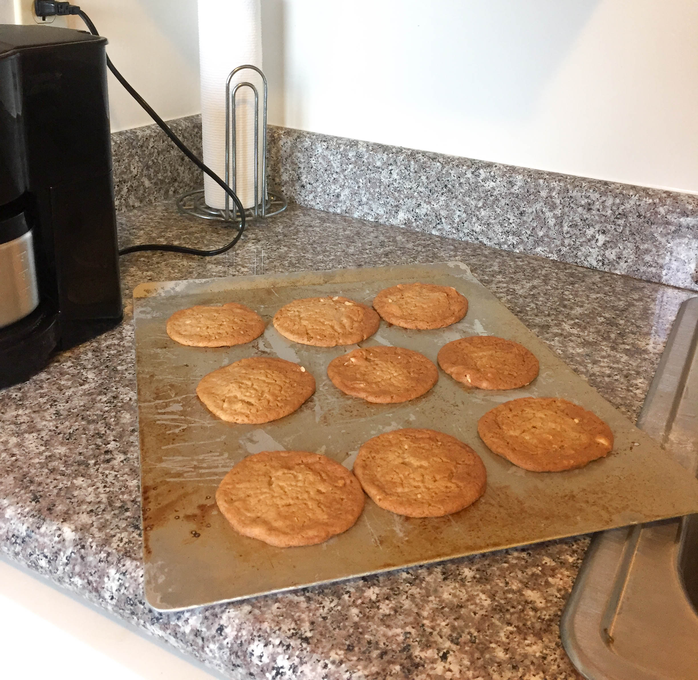 Peanut Butter Cookies (14)