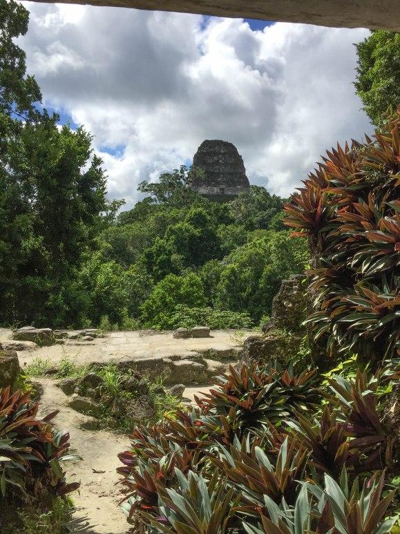 Hidden Tikal (10 of 18)