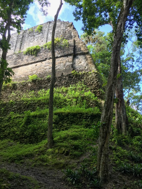 Hidden Tikal (7 of 18)