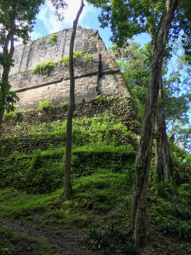 Hidden Tikal (7 of 18)