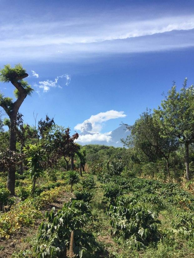 Visit Antigua Guatemala (13 of 21)