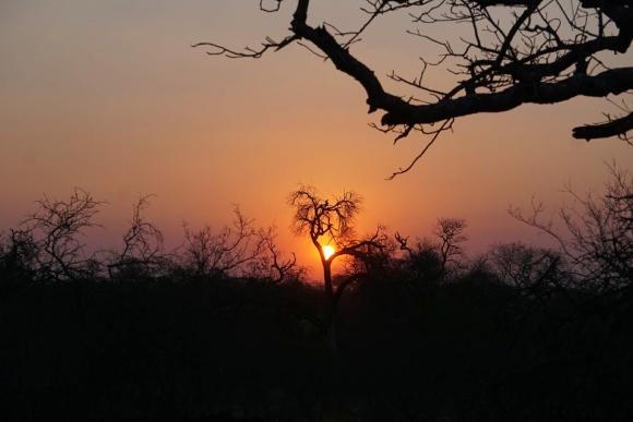 Kruger Park Safari_South_Africa (15 of 28)