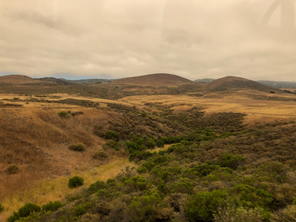 A picture of California's rolling hills. They are golden and dotted with green trees.